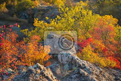 kolorowe krzewy na skałach w jesienny dzień na Ukrainie