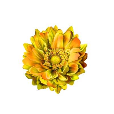 Obraz Kolorowe Mona Lisa kwiat, wiosna kwitną