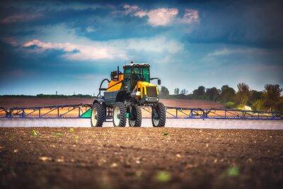 Obraz Kombajn zbożowy maszyny rolnicze zbiory złote pole dojrzałych dojrzałych