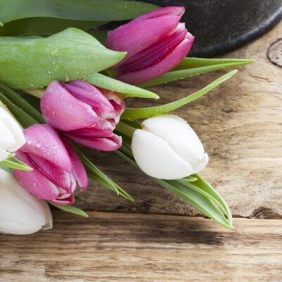 Obraz Koncepcja fioletowy tulipan wiosny na vintage tacy i drewnianym stole