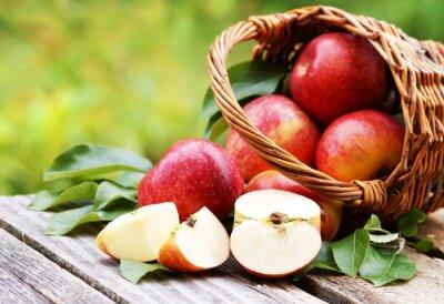 Obraz Kosz z Świeże jabłka