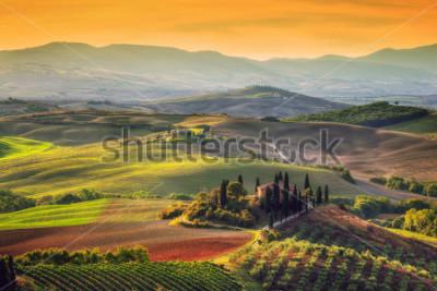 Obraz Krajobraz Toskanii o wschodzie słońca. Typowy dla regionu toskański dom wiejski, wzgórza, winnica. Włochy