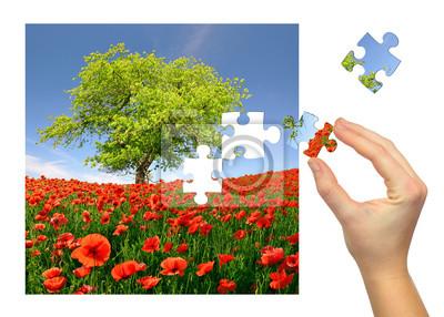 krajobraz wiosna puzzle z pola maku