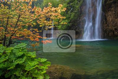 Krajobraz z wodospadem i czerwone drzewo