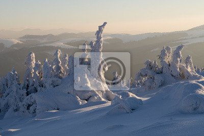 Królestwo śniegu