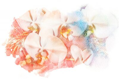 Obraz Kwiat Akwarele ilustracji.