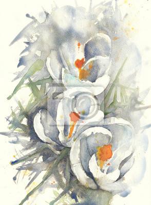 Kwiaty akwarela krokusy ilustracja kartkę z życzeniami