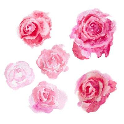 Obraz kwiaty akwareli. róże