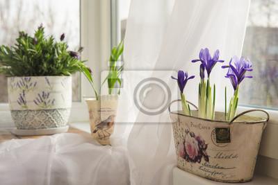 Obraz kwiaty w doniczce na parapecie