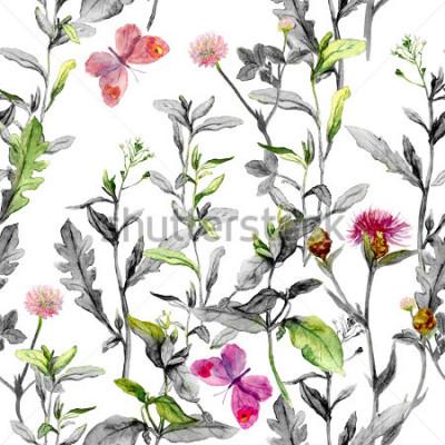 Obraz Łąka kwiaty, trawa, zioła. Zamknięte tło ziołowe w czarno-białych kolorach dla modeli modyfikacji. Akwarela