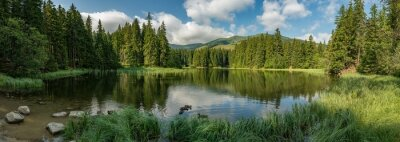 Obraz lake in the forest in lower tatra mountains