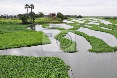 Lake w Phnom Penh w Kambodży