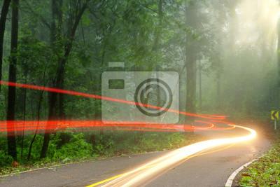 Las drogowego na początku mglisty poranek z widocznych promieni słonecznych
