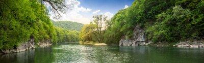 Obraz las rzeka z kamieni na brzegu