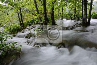 Las w wodzie