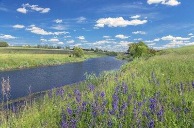 Obraz Latem krajobraz z rzeki