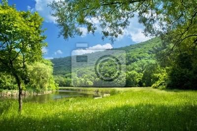 Latem krajobraz z rzeki i niebieskiego nieba