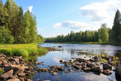 Obraz Latem rzeka