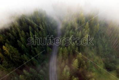 Obraz Lato widok górska droga