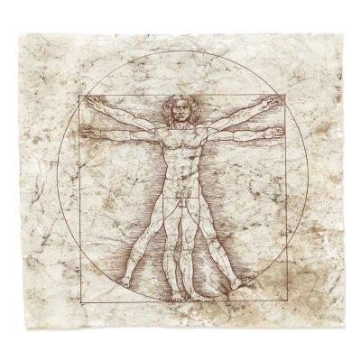 Obraz Leonardo da Vinci