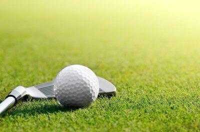 Obraz Let's golf