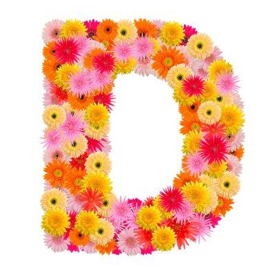 Obraz Litera D alfabet z Gerbera na białym tle