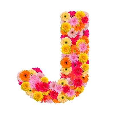 Obraz Litera J alfabet z Gerbera na białym tle