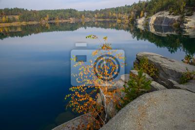 Little autumn tree and big blue lake