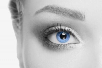 Obraz ludzkie oko