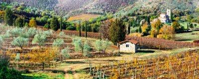 Obraz Magiczne jesienne krajobrazy w Toskanii. Region winorośli we Włoszech