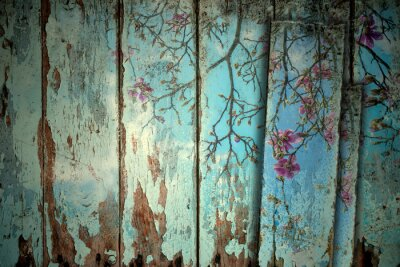Obraz Magnolia wiosną starym tle
