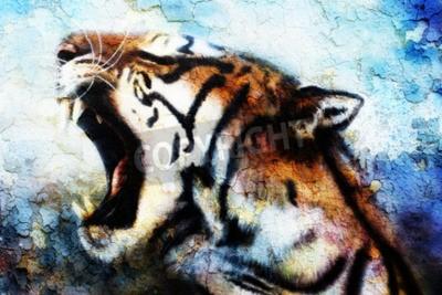 Obraz malowanie Tygrys sumatrzański ryczący