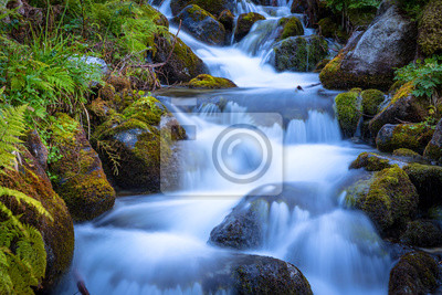 mały wodospad na potoku górskim