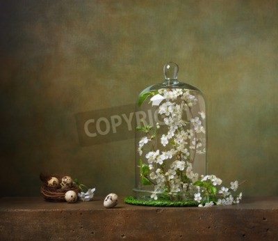 Obraz Martwa natura z Cloche z gałęzi drzewa kwitnienia