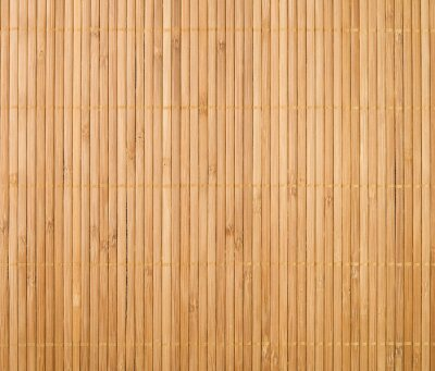 Obraz Mata Bambusowa Tle
