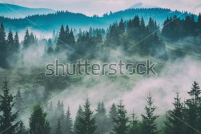 Obraz Mglista carpathian halna dolina po deszczu. Stylizacja vintage grunge.