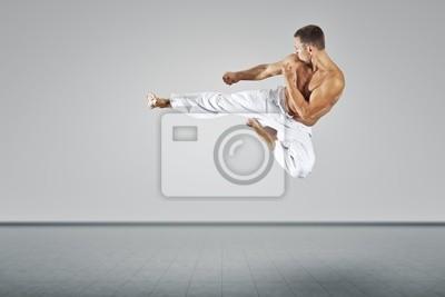 Mistrz sztuk walki