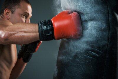 Obraz Młody bokser