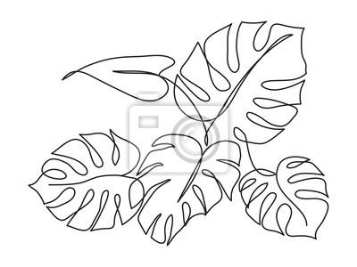 Obraz Monstera Tropical leaf
