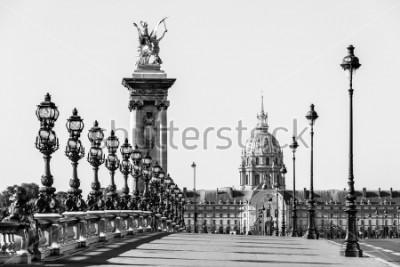 Obraz Most Pont Alexandre III nad Sekwaną i Hotel des Invalides w tle w słoneczny letni poranek. Most ozdobiony ozdobnymi secesyjnymi lampami i rzeźbami. Paryż, Francja