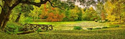 Obraz Most sceny jesienią - Lipnik (Teketo) park, Nikolovo village area, Bulgaria. Nowoczesne malarstwo olejne ilustracji sztuki