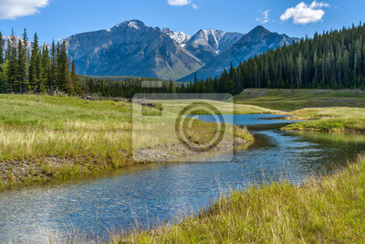 Obraz Mountain Creek - A Spring morning view of a clear creek winding through green meadow and dense forest at base of Mt. Astley, Banff National Park, Alberta, Canada.