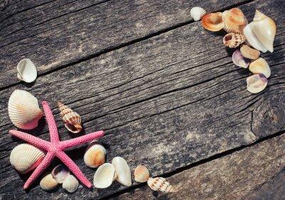 Obraz muszle morskie na tle drewnianych
