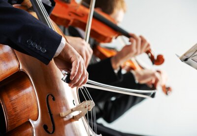 Obraz Muzyka klasyczna koncert