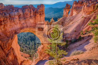 Obraz Natural Arch w Parku Narodowym Bryce Canyon