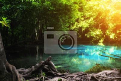 Niebieski basen w Emerald Pool jest niewidoczny basen w namorzynowym lesie w Krabi w Tajlandii.