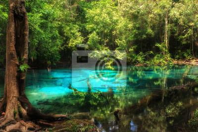 Niebieski basen w Emerald Pool niewidzialne basen w Krabi, Tajlandia.