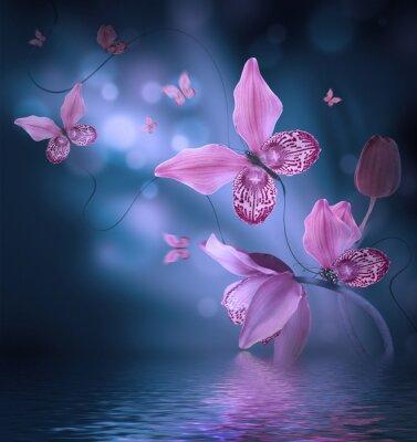 Obraz Niesamowite motyle z płatków orchidei, kwiatów tle. Kwiaty i owady.