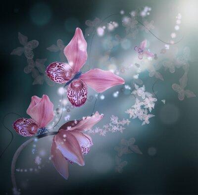 Obraz Niesamowite motyle z płatków storczyków, kwiatów tle. Kwiaty i owady.