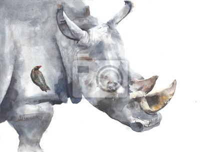 Nosorożec afrykański safari zwierząt akwarela malowanie ilustracji samodzielnie na białym tle